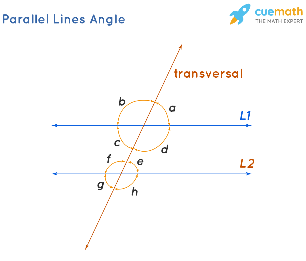 Parallel Lines Angles