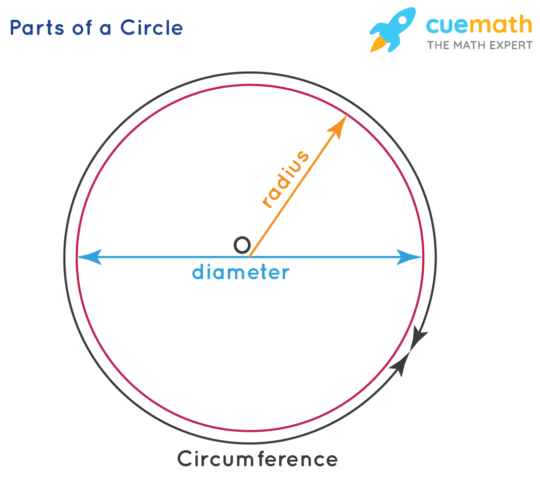 Parts of a circle used to determine area of a circle
