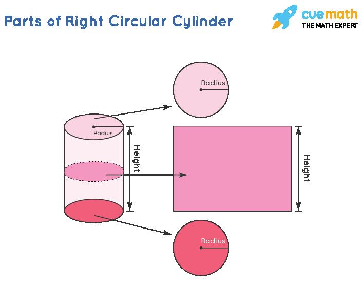 Right Circular Cylinder - Parts