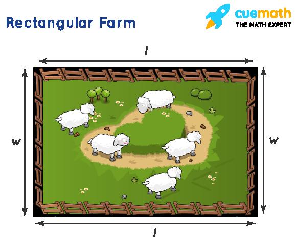 Perimeter of rectangular farm