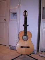 guitar is an example of hyperbola