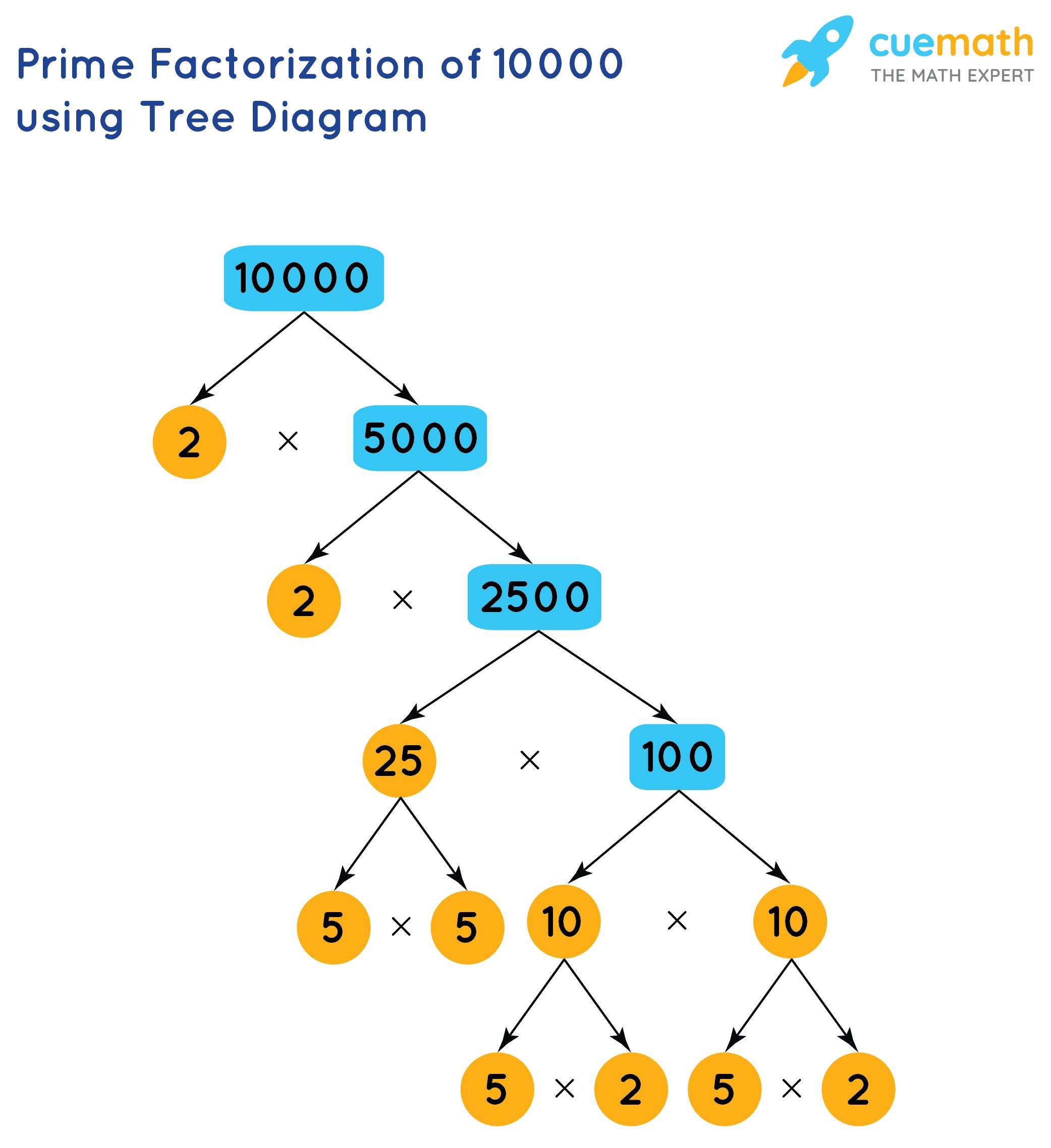 prime factorization of 10000