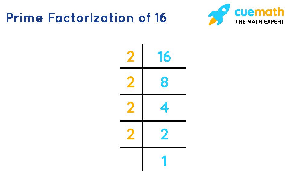 Factors of 16 by prime factorization