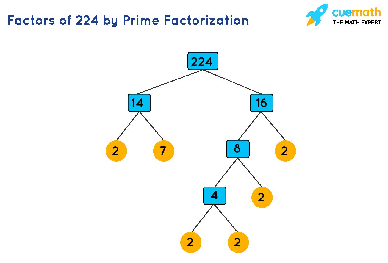 prime factorization of 224