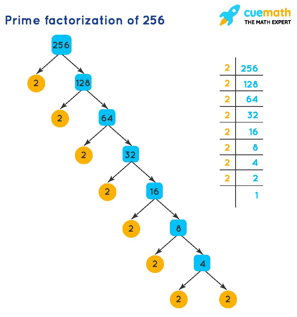 prime factorization of 256