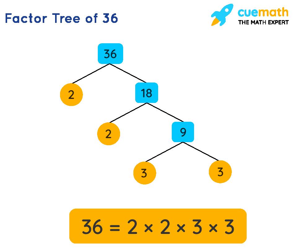 Prime factors of 36 by factor tree method