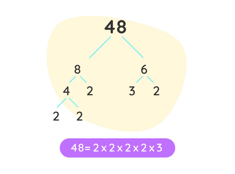 Prime factorization of 48