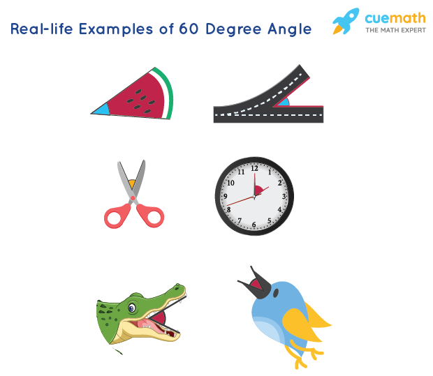 Real-life examples of 60 Degree Angle