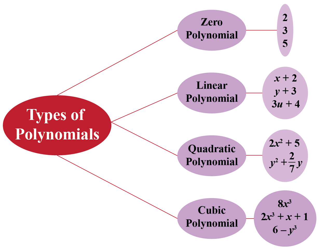 types of polynomial in one variable based on degree