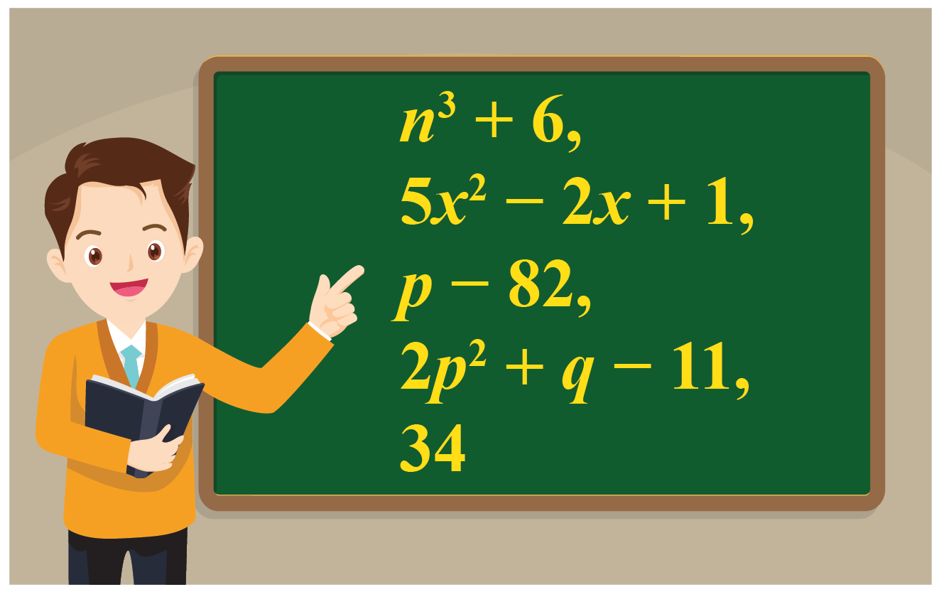 classify the given polynomials