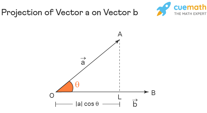 Projection Vector