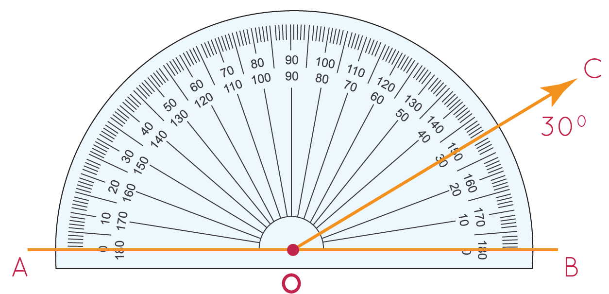 Angle BOC is marked 30 degrees with a protractor