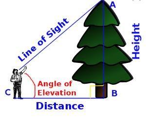 Line of straight