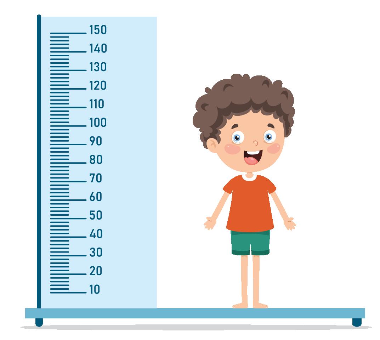 height of a boy