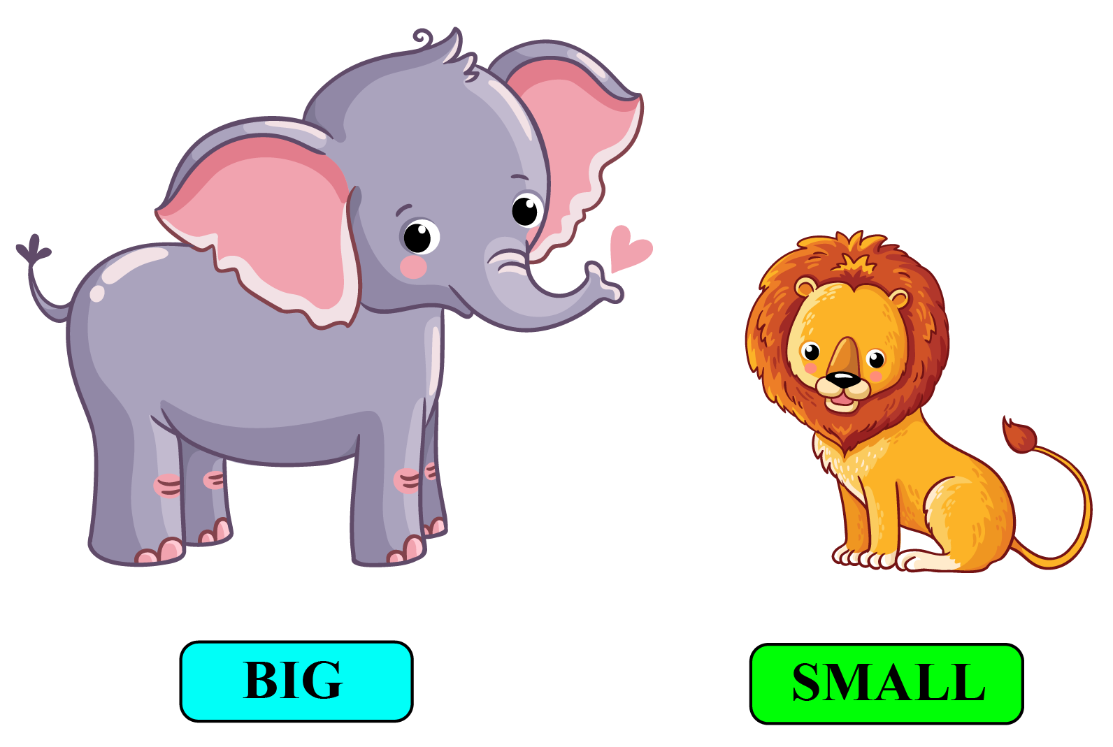 comparison of size of two animals