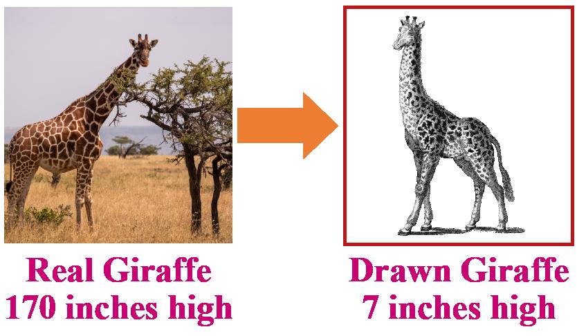 Real vs drawn image of a giraffe