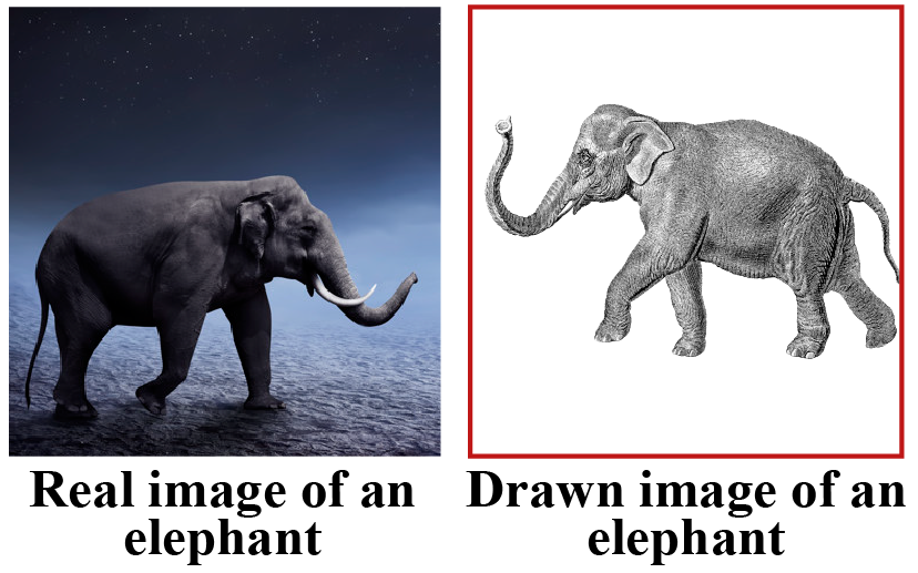 Real and drawn image of an elephant