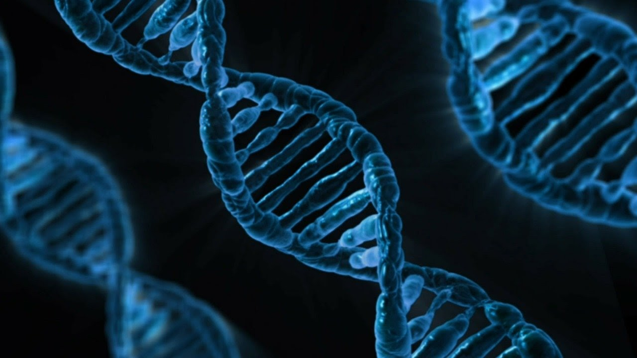 Dna: A type of sequence in nature