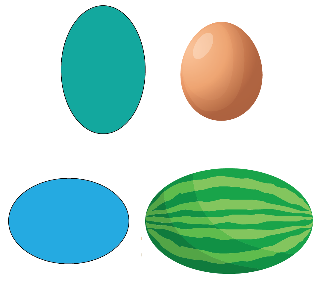 An oval is similar to a circle but its shape is slightly elongated in nature.