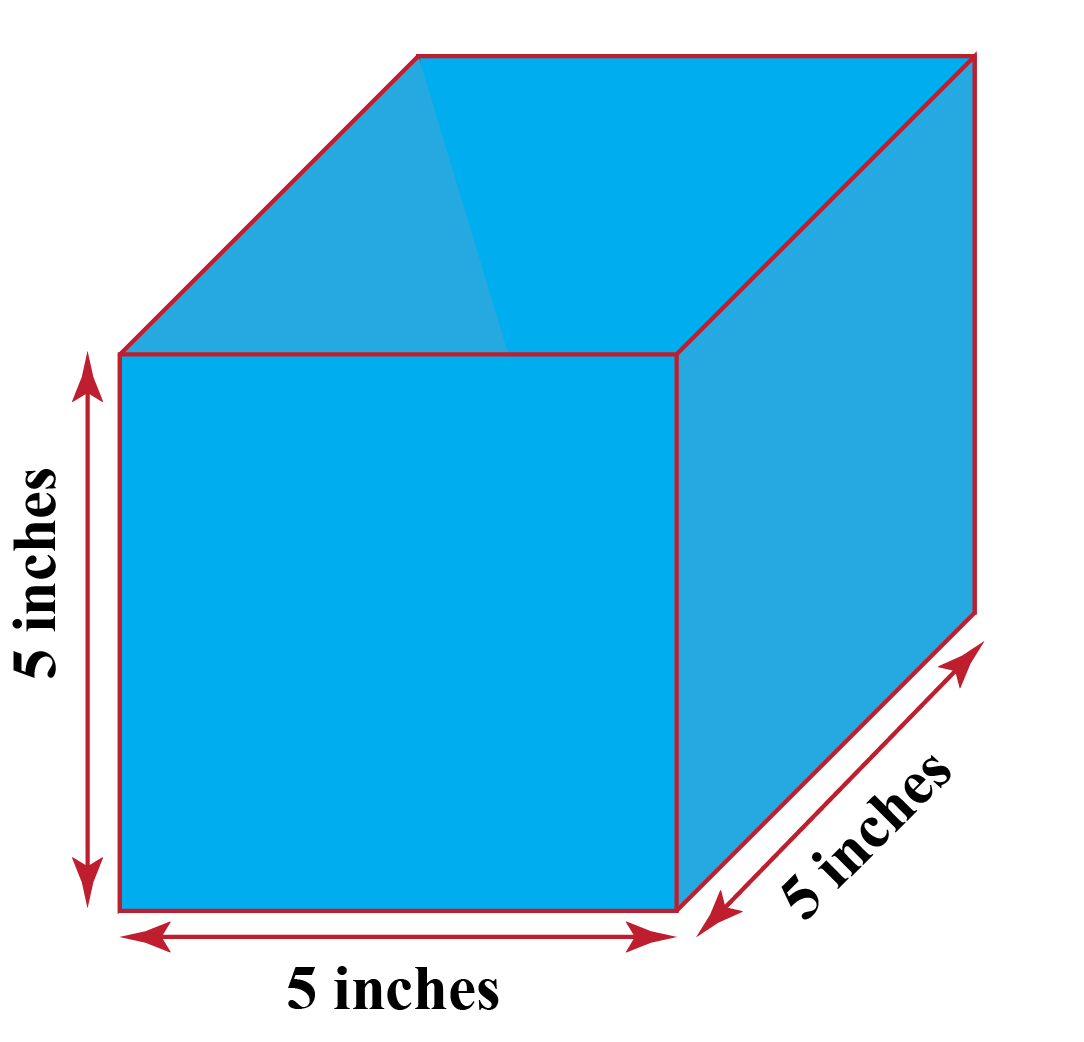 A cube having all sides \(5\) inches.