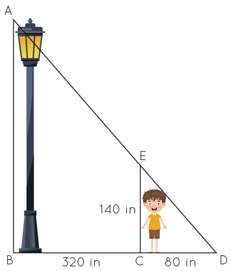 Practice Questions on Similar Triangles, Lamp post shadow