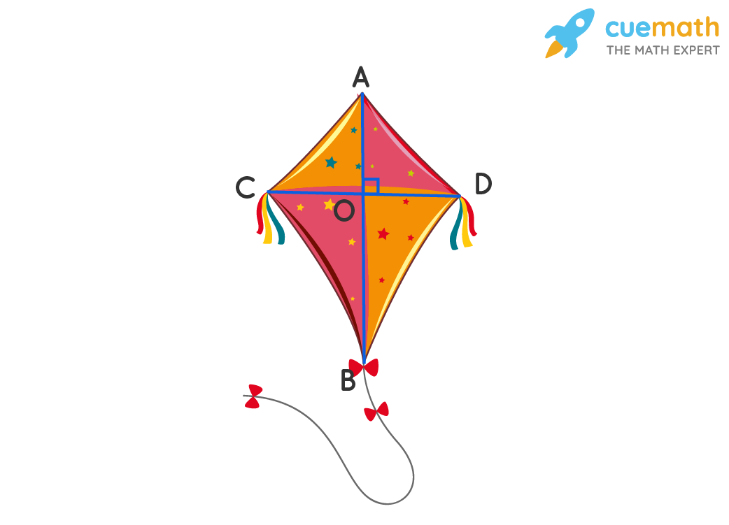 The two lines inside the kite intersect each other at right angles forming perpendicular lines