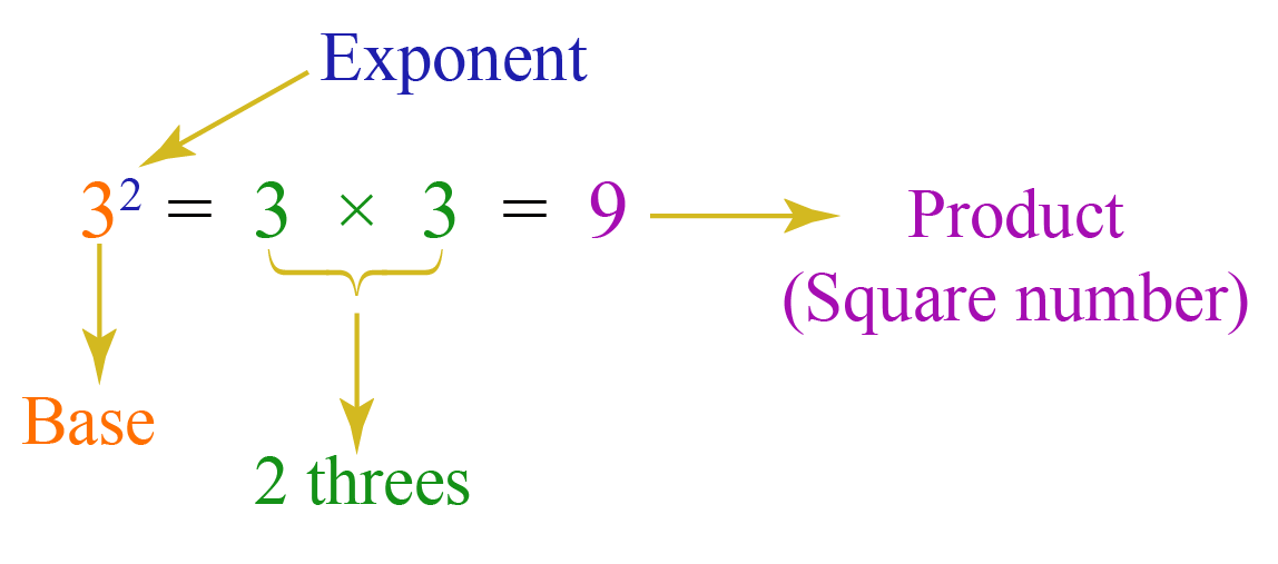 Square and square root - Exponent form is explained with an example, 3 square equals 9
