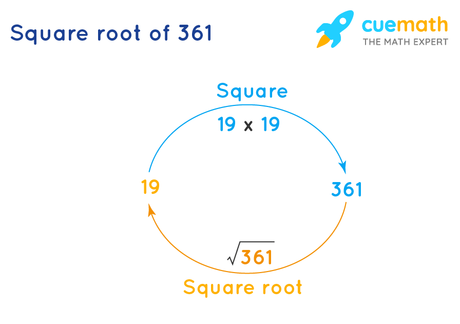 square root of 361