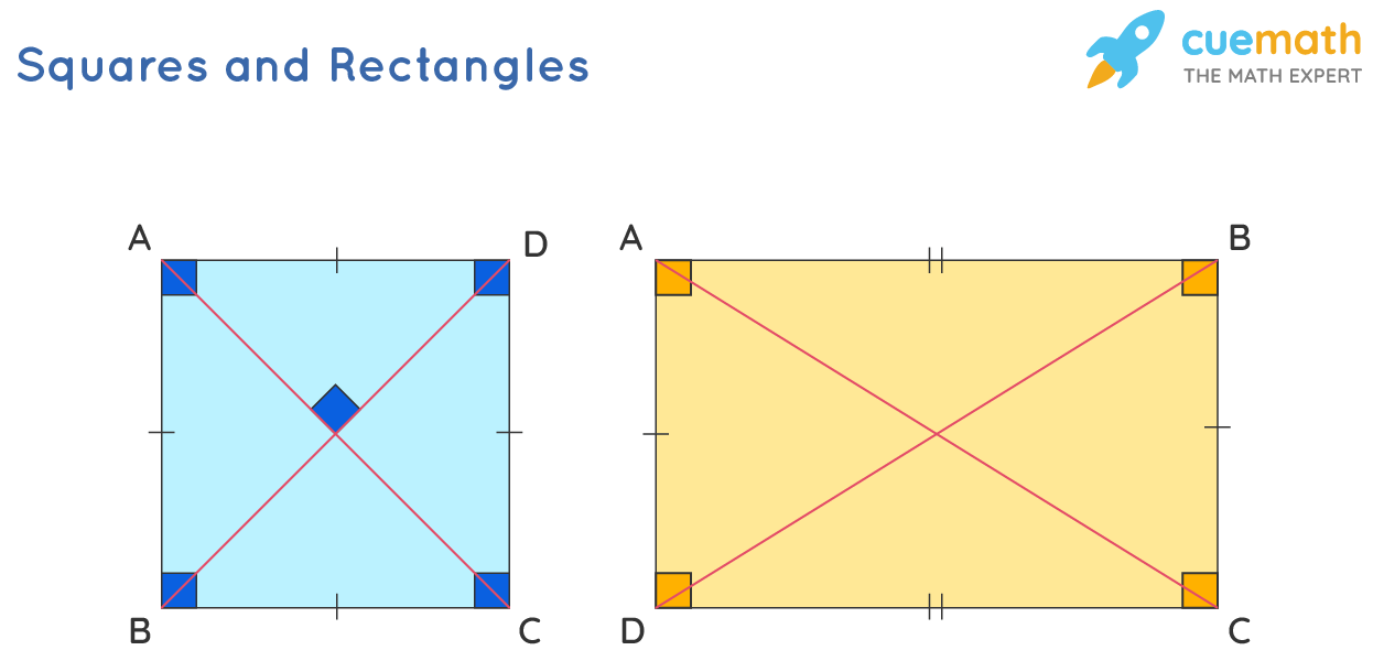 Square and Rectangles