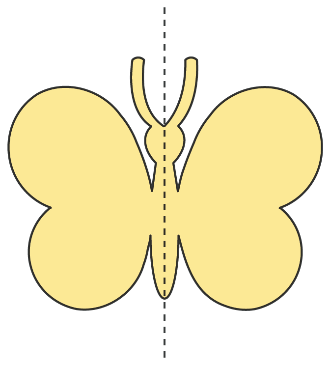 symmetry solved examples