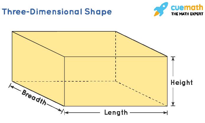 Three Dimensional Shape