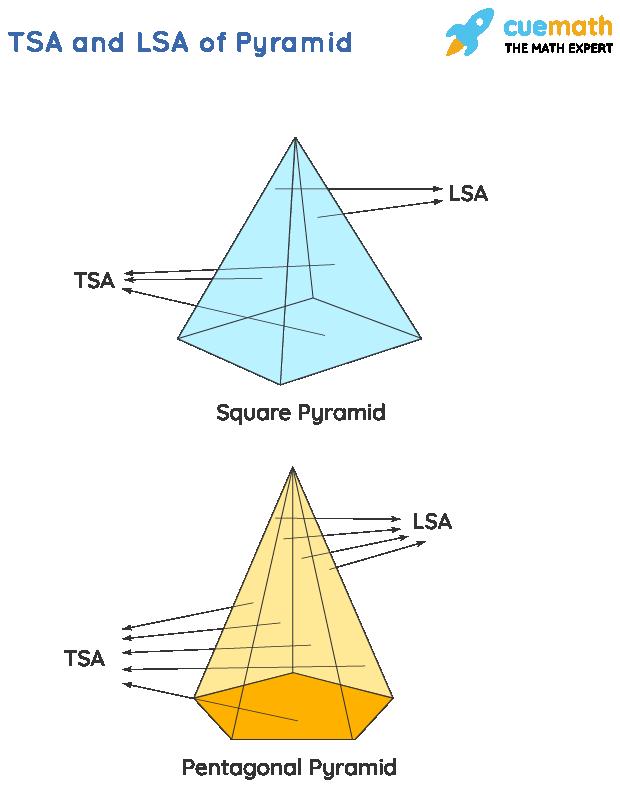 Surface Area of Pyramid: LSA and TSA of a pyramid (or) Total surface area and lateral surface area of pyramid
