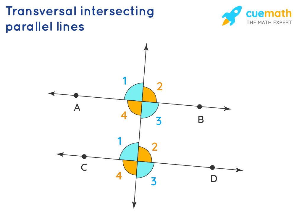 Transversal and parallel lines, related angles