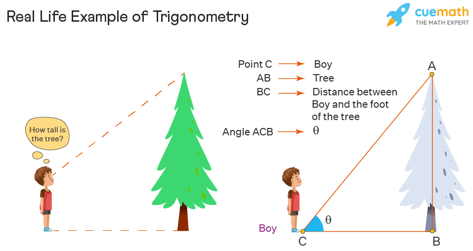real life trigonometry example of a boy looking at a tree wondering its height