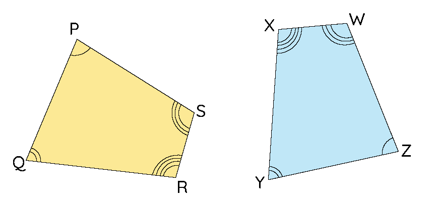 two congruent quadrilaterals