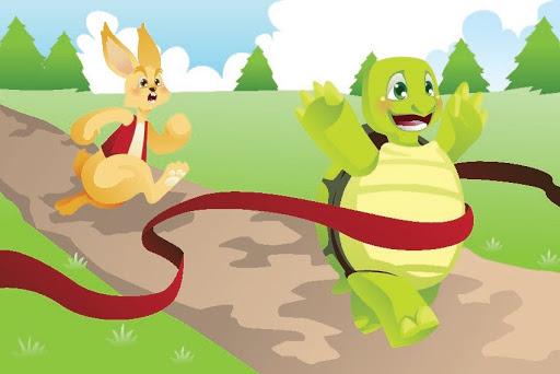 tortoise wins the race