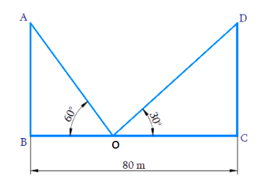 Two poles of equal heights are standing opposite each other on either side of the road, which is 80 m wide. From a point between them on the road, the angles of elevation of the top of the poles are 60° and 30°, respectively. Find the height of the poles and the distances of the point from the poles.