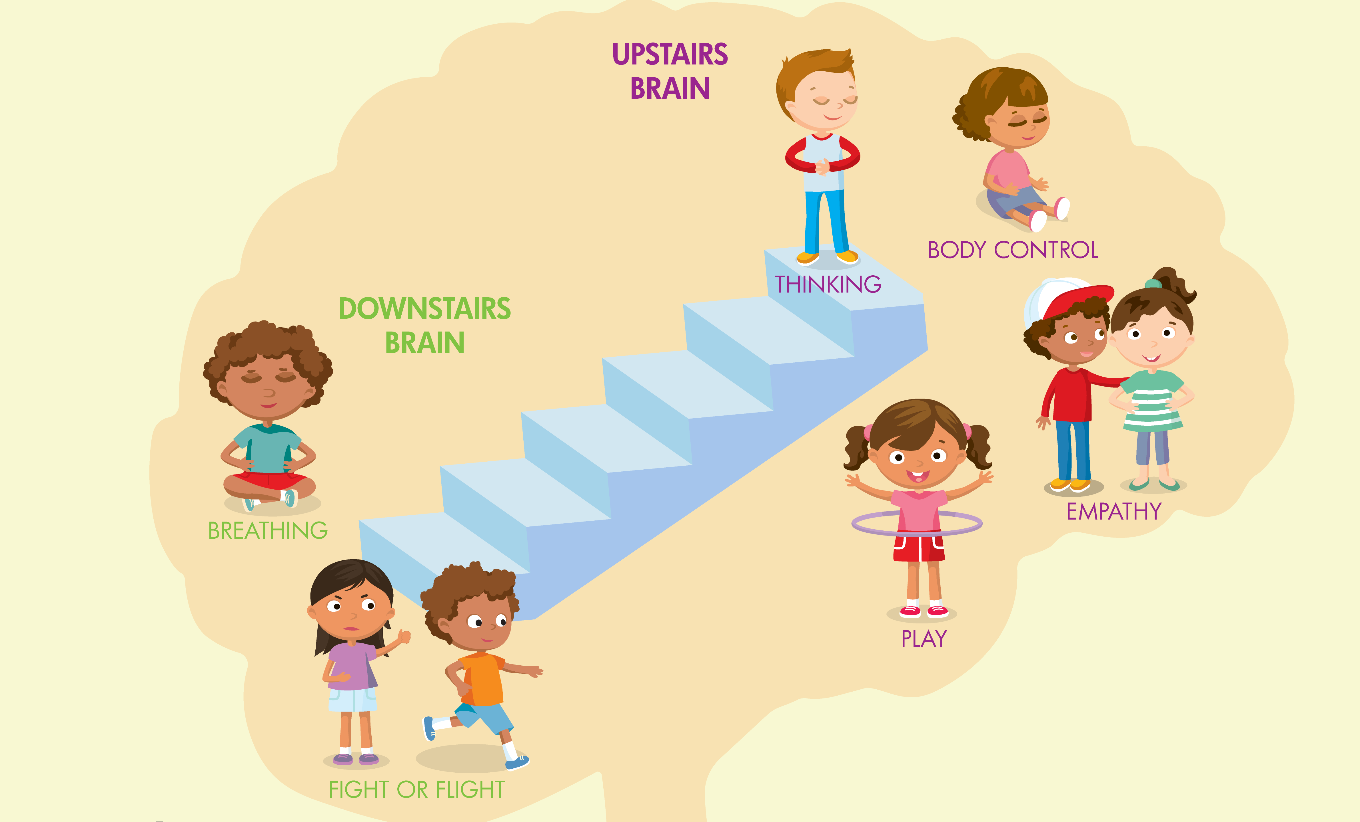Activities associated with upstairs and downstairs brain