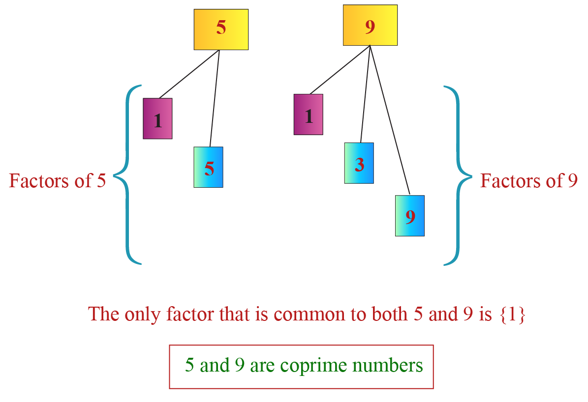 What are coprime numbers? Showing 5 and 9 is a coprime pair