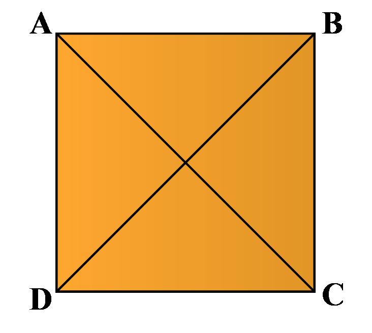Diagonals of a square: A square has two diagonals