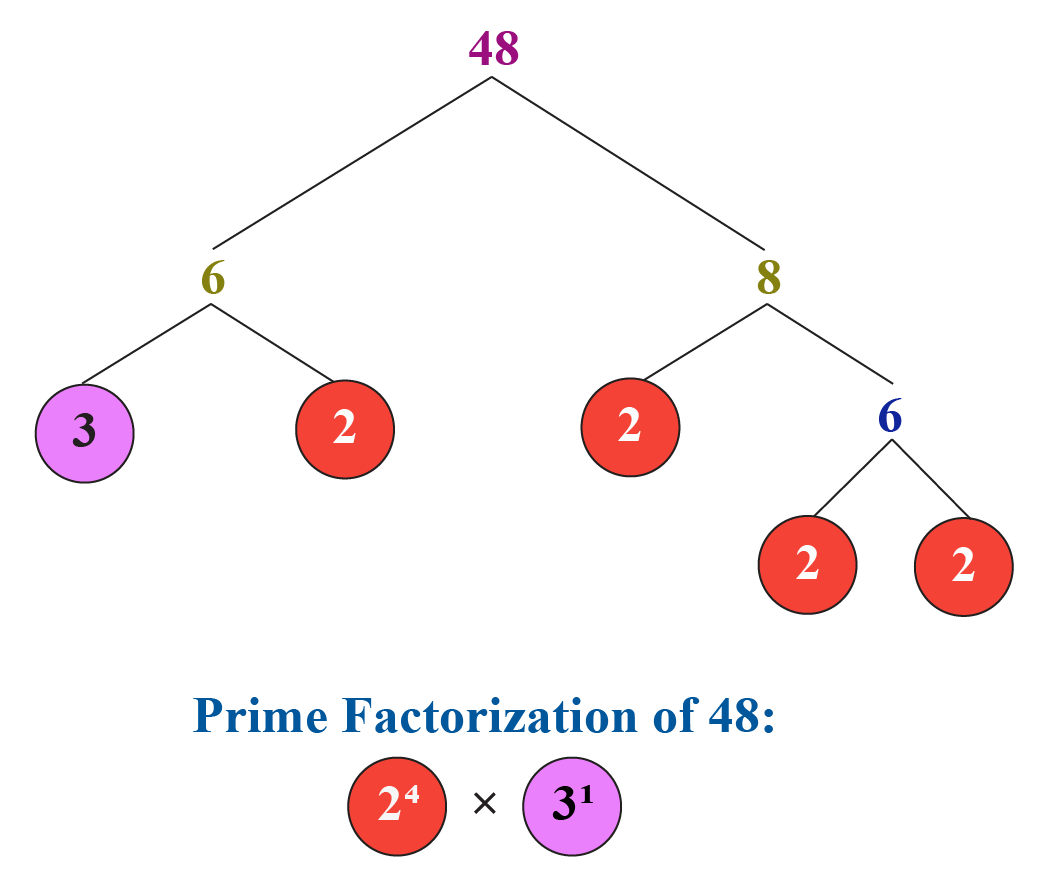 LCM using fundamental theorem of arithmetic: Prime factorization of 48
