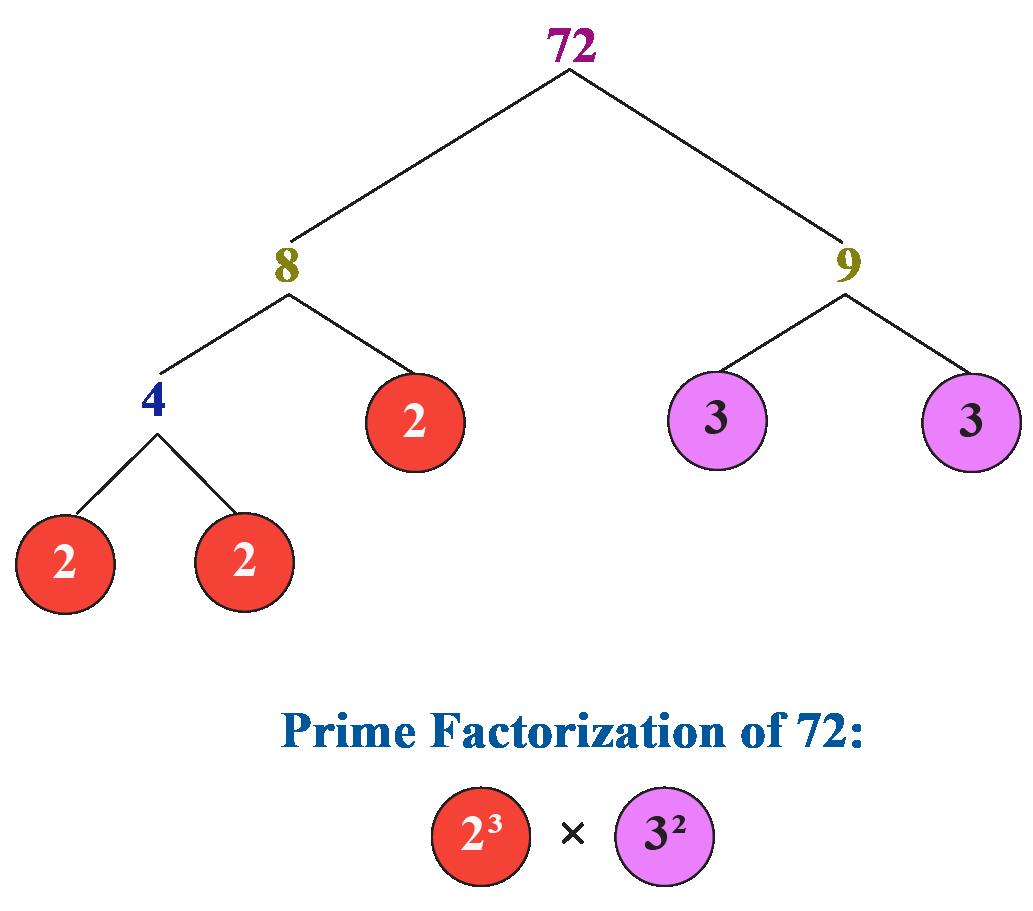 LCM using fundamental theorem of arithmetic: Prime factorization of 72