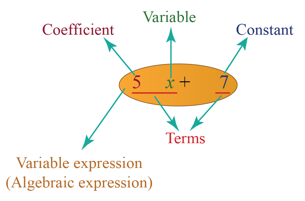 Example of a variable expression or algebraic expression