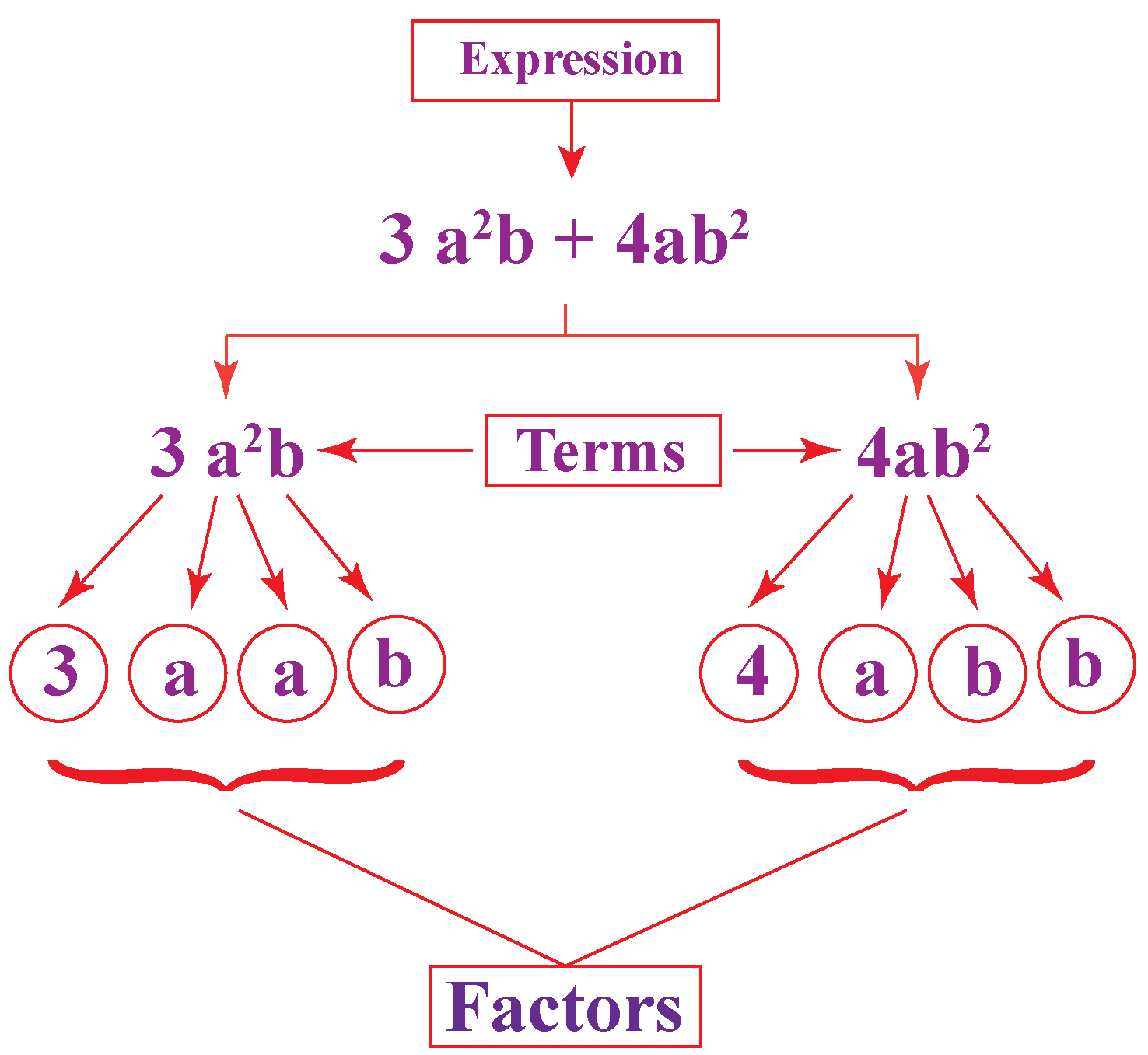 Factorisation of polynomials