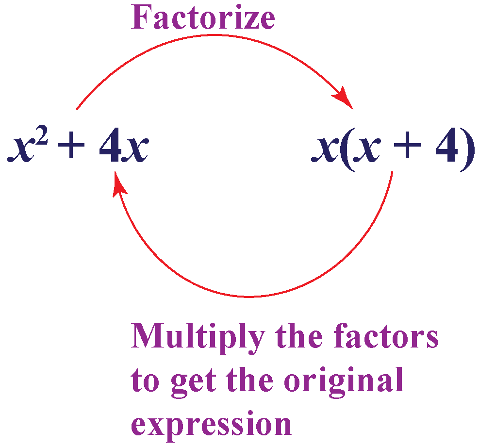 Factoring and Expanding- algebraic expressions class 8