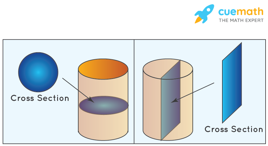 Cross Section of a Cylinder