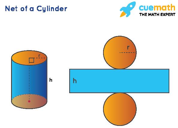 Net of a Cylinder