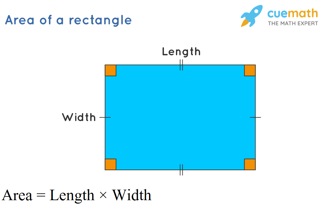 The area of a rectangle