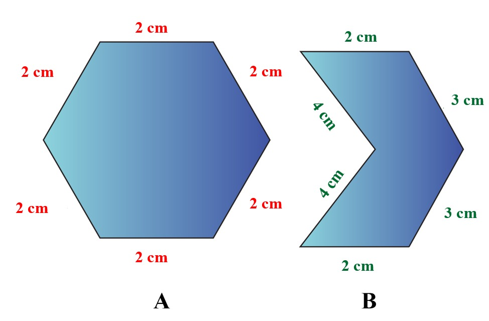 two different hexagons drawn by Max. A Regular and an Irregular Hexagon