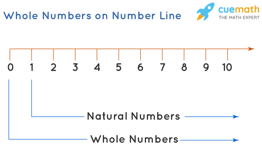 Whole Numbers on Number Line
